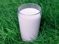 Vaso de leche - Tome más calcio para prevenir la osteoporosis