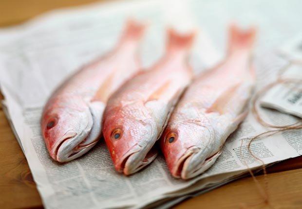 Pescado pardo rojo - Alimentos que ayudan a combatir la depresión