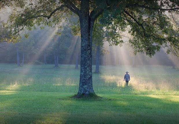 Persona caminando por un campo verde - Formas de reducir el estrés