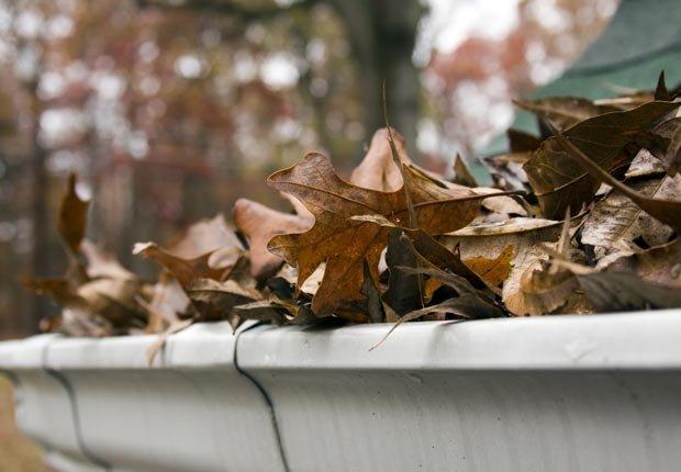 Limpie sus canaletas - Prepare su casa para el invierno