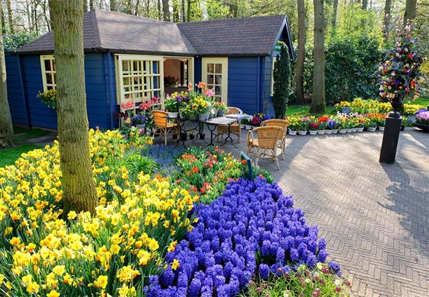 Colorful flowerbed at the base of a tree, 10 Ways to Add a Curb Appeal to your Home