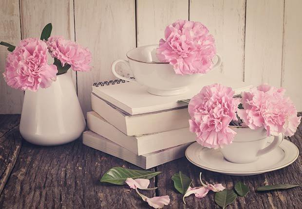 Flores con significado para decorar en ocasiones especiales - Claveles