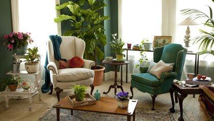 8 pasos para crear un jardín interior