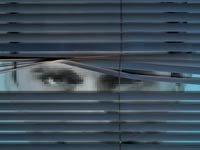 Hombre mirando a través de unas persianas - ¿Es usted respetuoso de la privacidad de las personas en cuanto a la etiqueta digital?