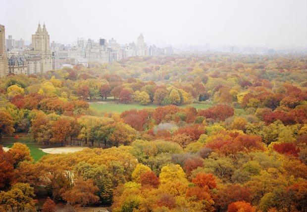 Central Park - Las 10 cosas gratis que hacer en América