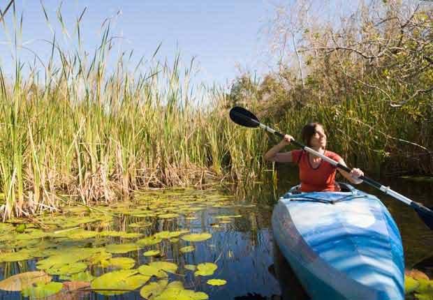Mujer en un bote en los Everglades - Experiencias increíbles en los parques nacionales