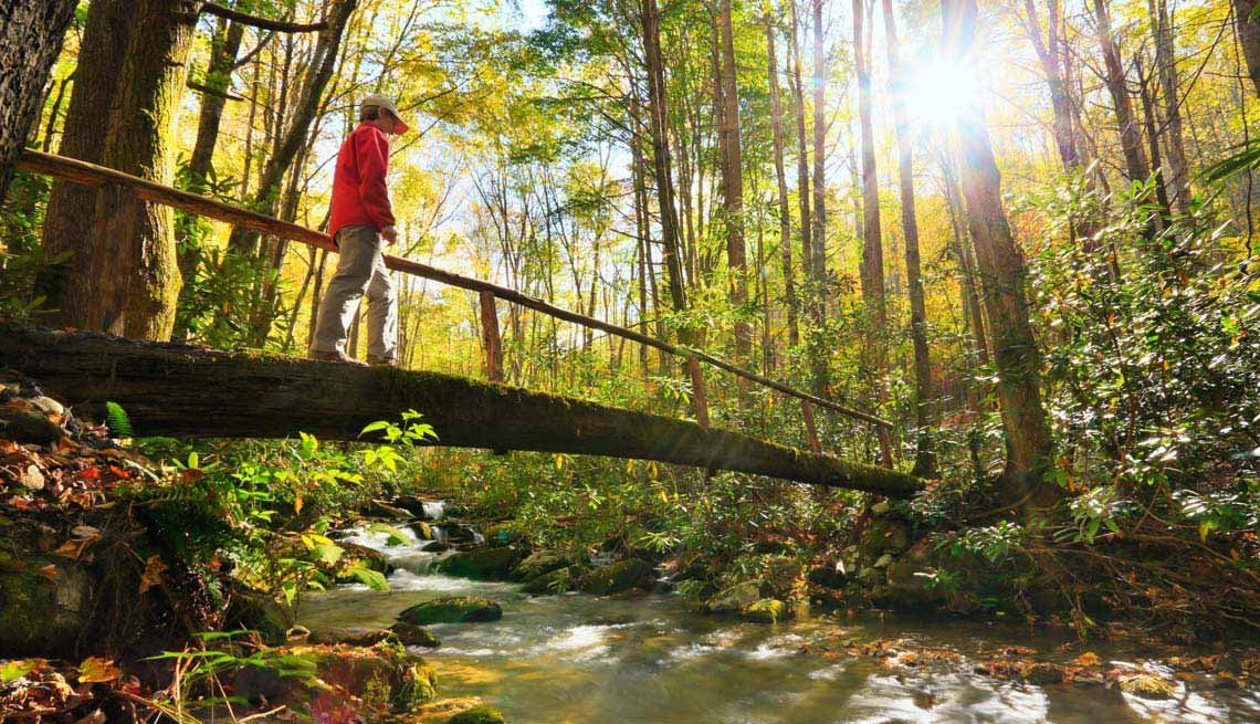 Tennessee Walking — and More