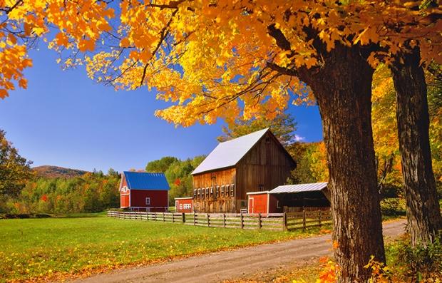 Pronostican deslumbrantes paisajes de otoño
