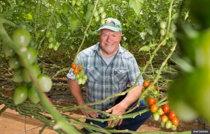 Michael O'Gorman en una de las fincas de tomate en México, que se las arregla para una empresa.