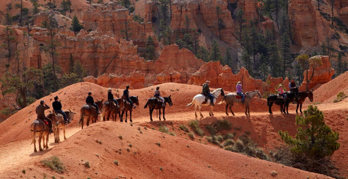 By Horseback Through Bryce Amphitheater