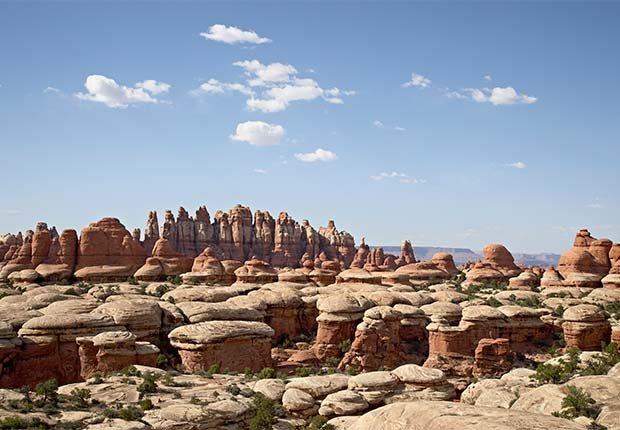 Needles District in Canyonlands, 9 Under-the-Radar National Parks for Summer