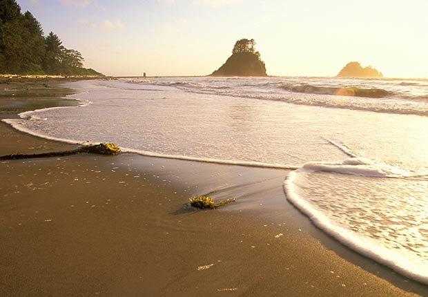 Playas recónditas en Estados Unidos - Ozette Beach Washington