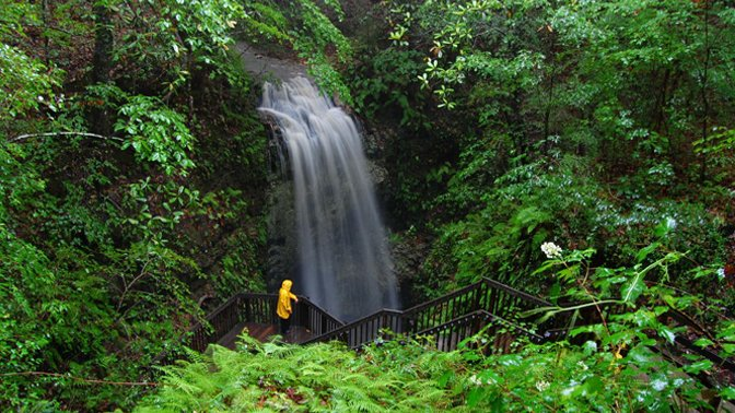 Falling Waters Falls, Chipley, Florida