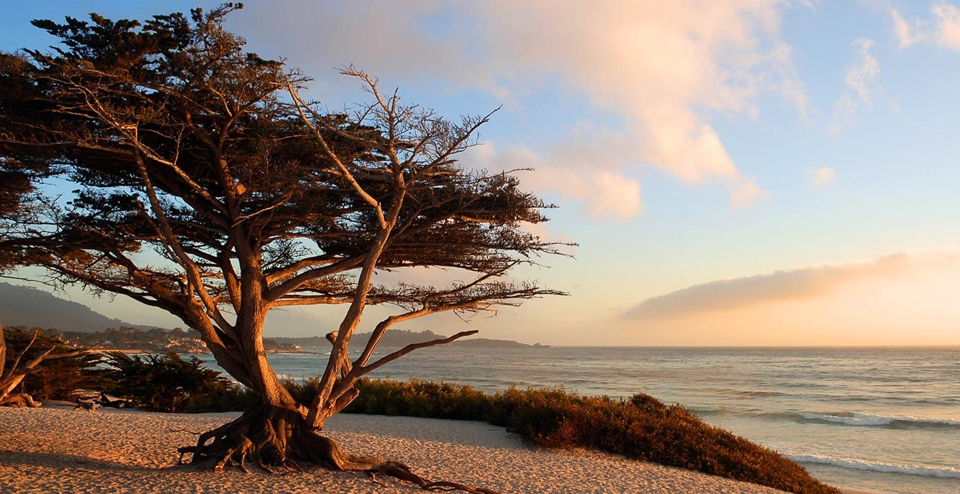 photo of Family Weekend Getaway in Monterey and Carmel