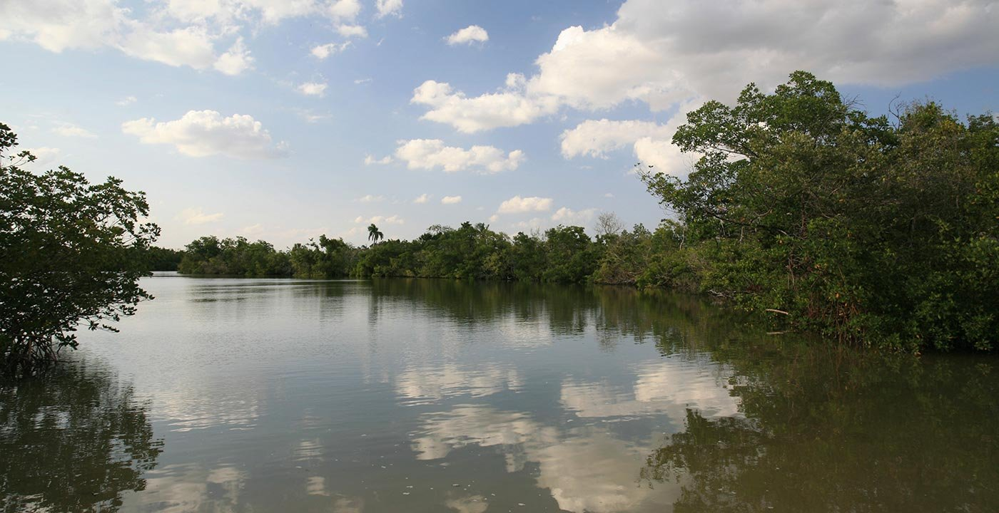 Explore an Estuarine Research Reserve