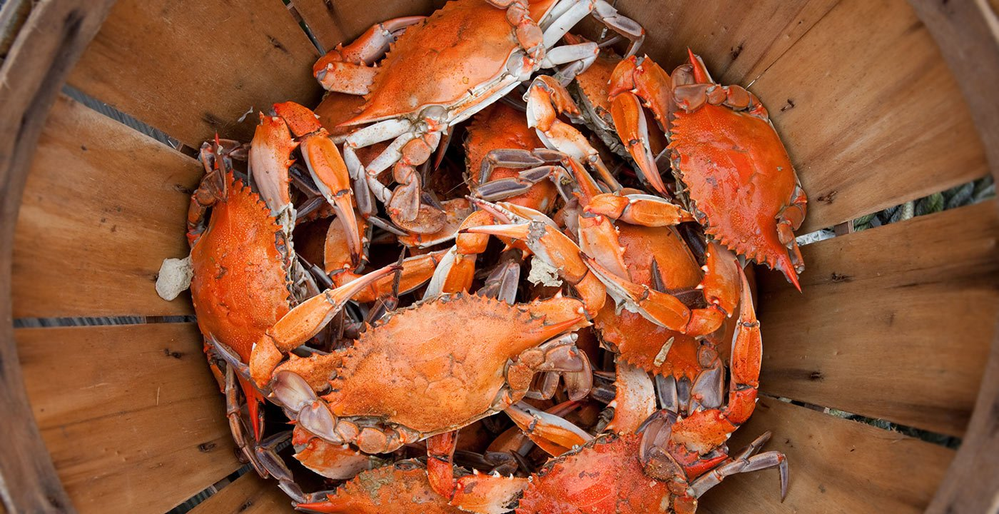 Get Your Fingers Dirty Pickin' Steamed Crabs