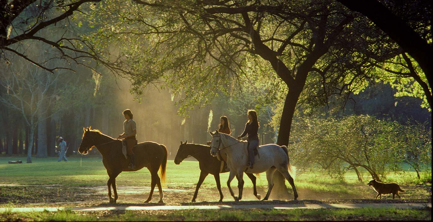 Enjoy the Great Outdoors at Hermann Park